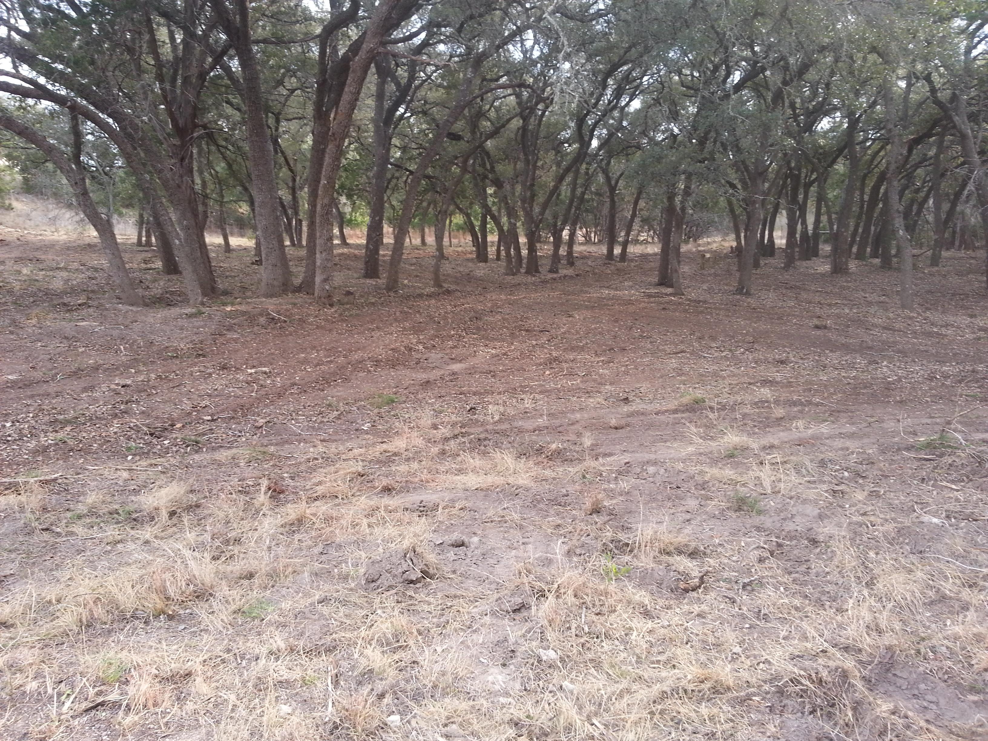 Cedar Clearing & Mesquite Grubbing in Medina, Tx